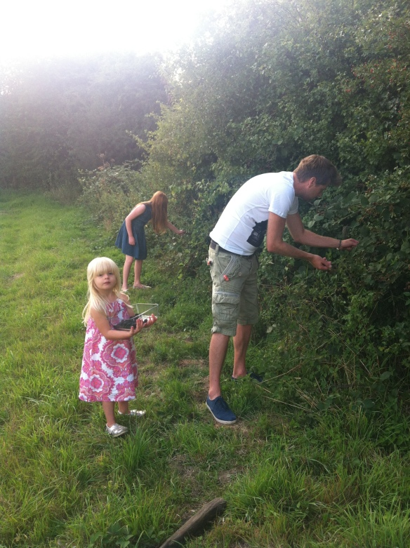 Busy in the hedgerow