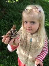 Saffie acorn fairy 2